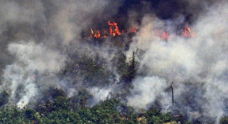 Raquel Dodge diz que há indícios de ação orquestrada para causar incêndios na Amazônia